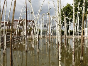 Cage bassin, Anselm Kiefer photographe georges poncet